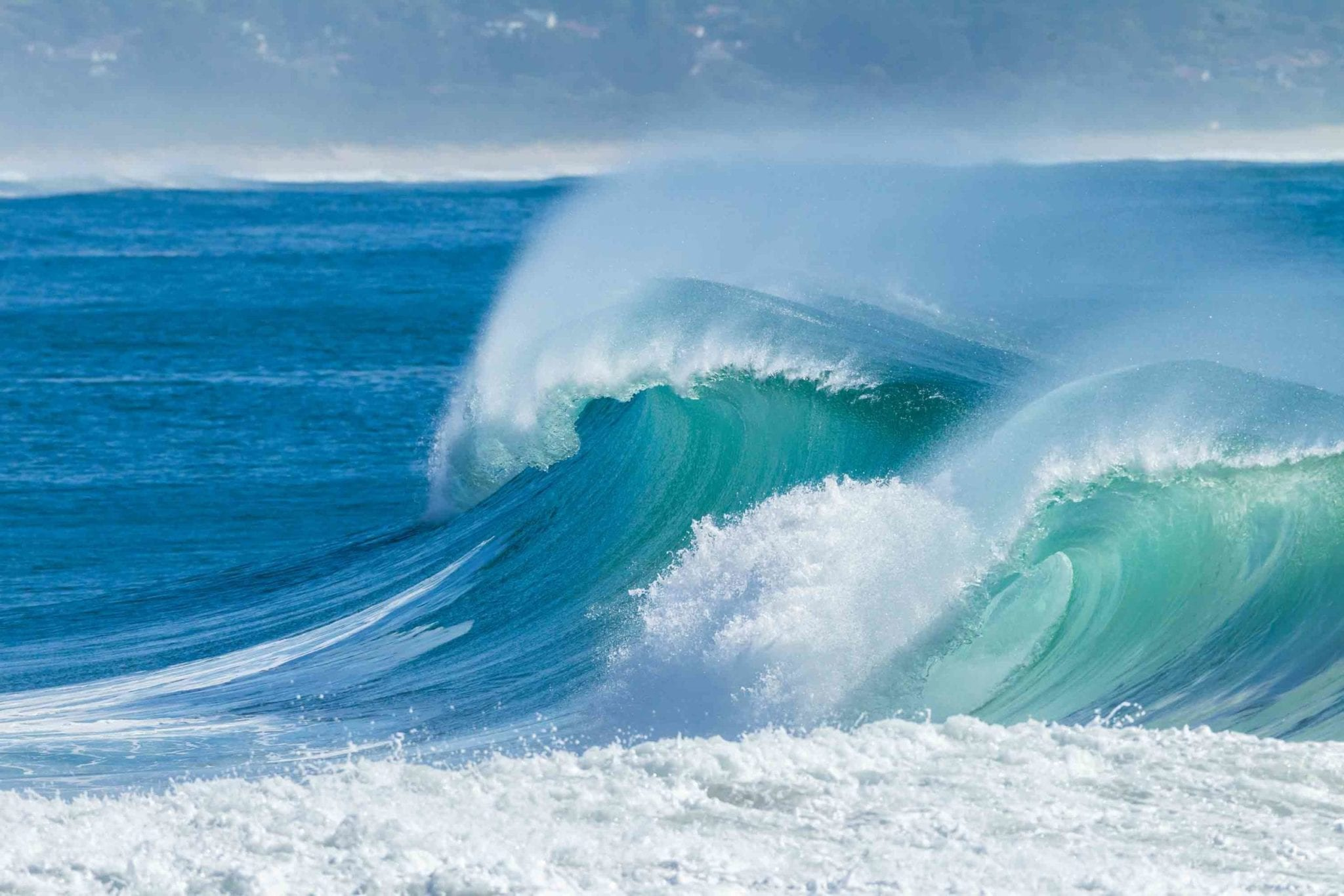 Catching the Wave: How Family Funds Capitalize on Health Technology Investments